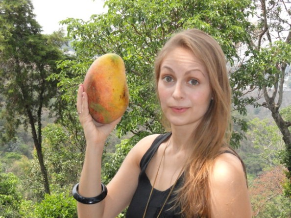 A mango about the size of my head.